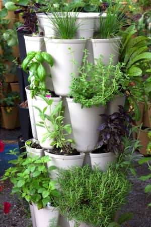 Greenstalk Vertical Garden