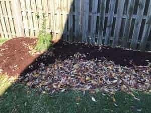 No Till Garden Prep