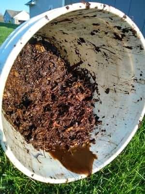 Slimy Compost