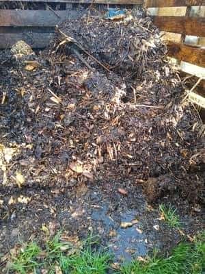 Wet Compost